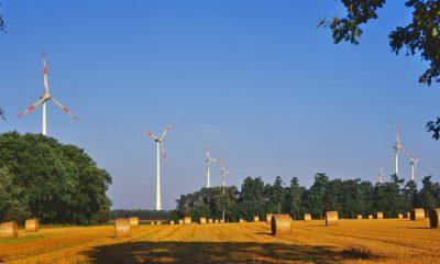 Greenpeace Energy ve QUADRA Enerji işbirliği